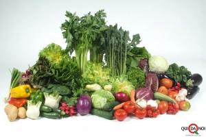 verdura_agri