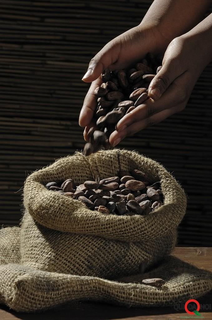 fave cioccolato_anastasia