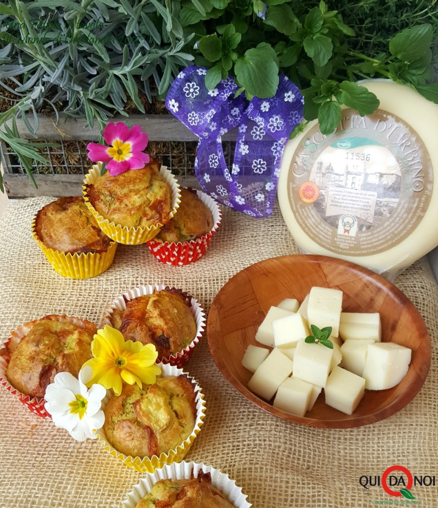 muffin casciotta 2
