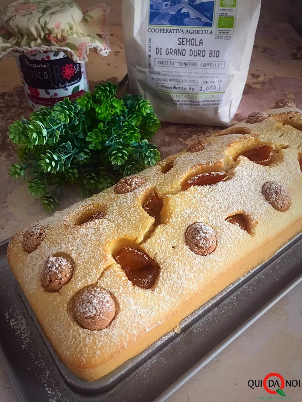 plumcake di farina di semola con amaretti e kumquat_monica benedetto (3)