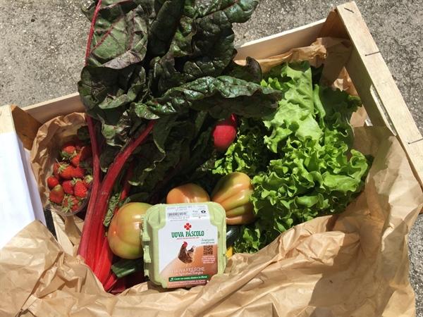 """Fattoria sociale """"La Volpe sotto i Gelsi"""": bio kit """"AntiCovid-19"""" con frutta e verdure bio e beni di prima necessità"""