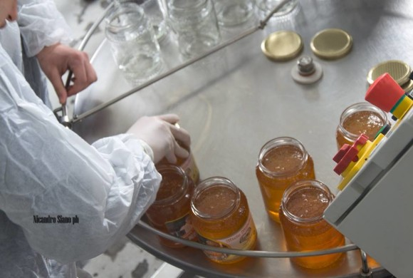 """Cooperativa sociale LAI: """"SolidApe"""" è il miele nato dalla sinergia con l'APAM"""