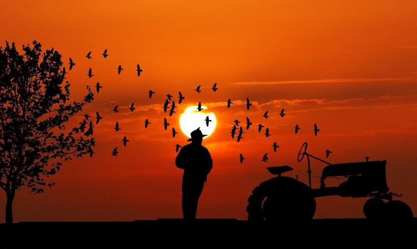 17 aprile. Giornata mondiale della lotta contadina