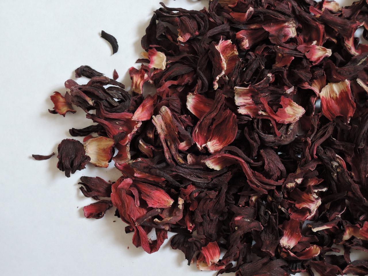 hibiscus-3284431_1280