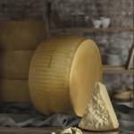 Consorzio Parmigiano Reggiano: nasce il primo negozio online per acquistare direttamente dai produttori