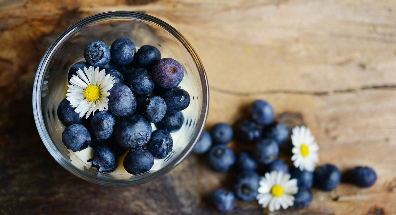 blueberries-2278921_1280