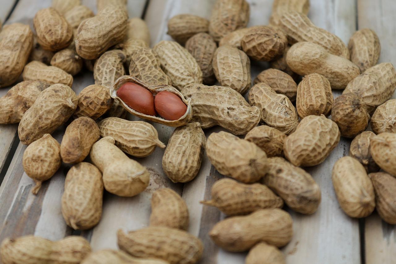 peanuts-1850809_1280