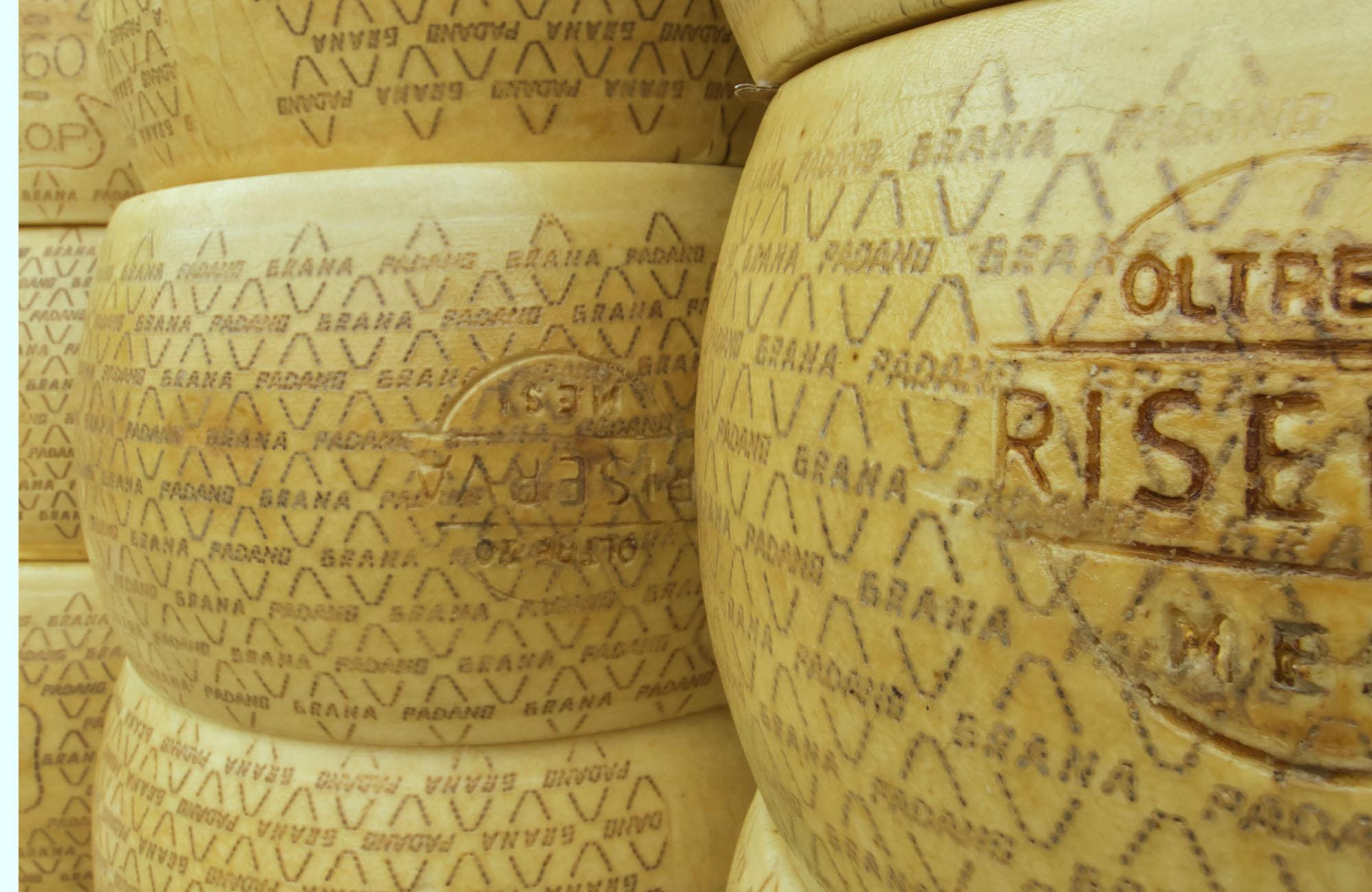 croste_formaggio_retangolare_01