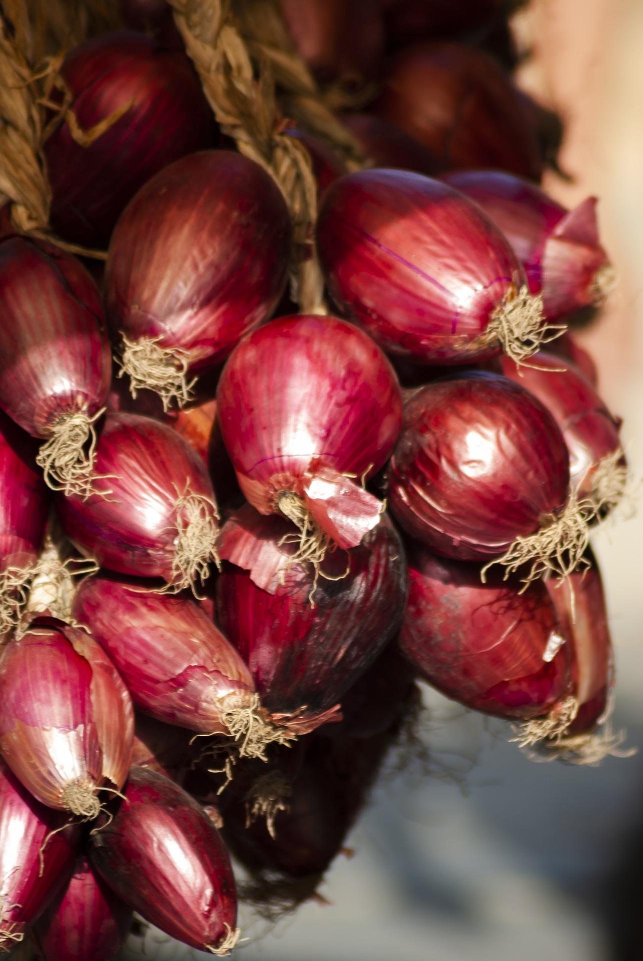 onions-4890846_1920