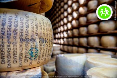 IL PARMIGIANO: LA CULTURA ITALIANA SI FA A SCAGLIE