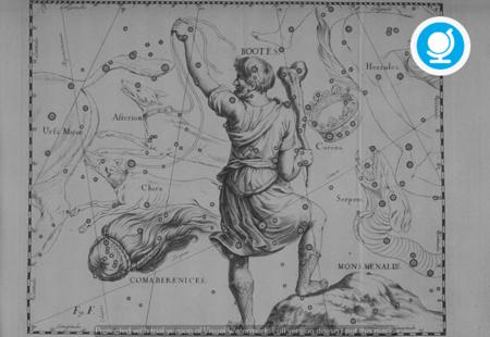 A proposito di Dioniso