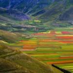 Castelluccio di Norcia e Pian Grande. Uno spettacolo impressionista tra i Monti Sibillini