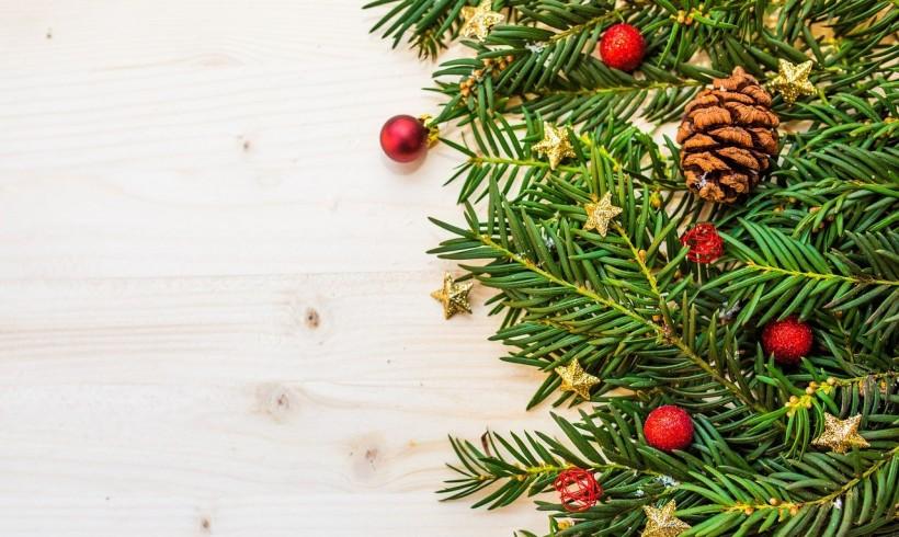 """Natale. 5 consigli per rendere il vostro albero ancora più """"green""""!"""